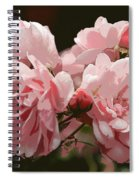 Bunch Of Roses Spiral Notebook