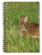 Bunny At Breakfast Spiral Notebook