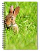 Bunny In Field  Spiral Notebook