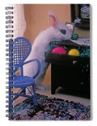Bunny In Small Room Spiral Notebook