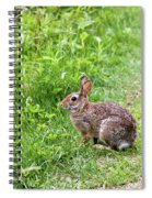 Bunny Rabbit Spiral Notebook