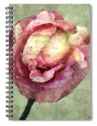 Burgundy Cream Spiral Notebook