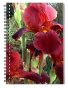 Burgundy Iris Flowers Spiral Notebook