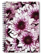 Burgundy White Crysanthemums Spiral Notebook