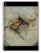 Buried Metal 3 Spiral Notebook