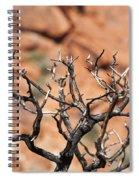 Burned Wood Spiral Notebook