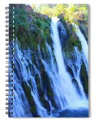 Burney Falls  Spiral Notebook