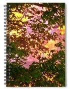 Burning Bush Spiral Notebook