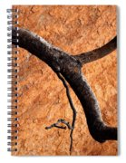 Burnt Orange Spiral Notebook