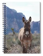 Burro Spiral Notebook