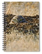 Burrowing Owl Peaking Outta The Hole  Spiral Notebook