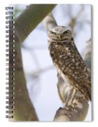 Burrowing Owl Perched On A Branch  Spiral Notebook