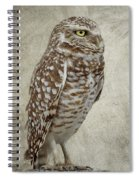 Burrowing Owl Portrait Spiral Notebook
