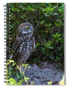 Burrowing Owls At Guard Spiral Notebook
