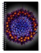 Burst In The Center Spiral Notebook