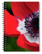 Burst Of Red Spiral Notebook