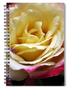 Burst Of Rose Spiral Notebook