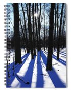 Burst Of Sunshine Spiral Notebook