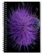 Burst Of Violet Spiral Notebook