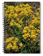 Burst Of Yellow Spiral Notebook