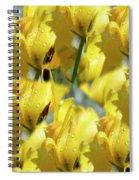 Burst Of Yellow Spiral Notebook