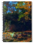 Bursting Autumn Cheer Spiral Notebook