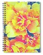 Bursting Life Spiral Notebook