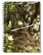 Bushtit On Branch In The Sun Spiral Notebook