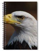 bust image of a Bald Eagle Spiral Notebook