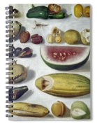 Bustos: Still Life, 1874 Spiral Notebook