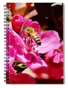 Busy As A Bee 031015 Spiral Notebook