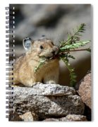 Busy As A Pika Spiral Notebook