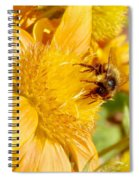 Busy Bee Spiral Notebook
