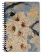 Busy Bumble Bee And Blossom.  Spiral Notebook