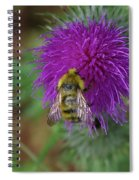 Busy Bumble Bee  Spiral Notebook
