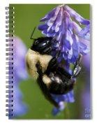 Busy Bumblebee.. Spiral Notebook