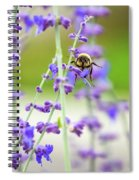 Busy In Lavender 3 Spiral Notebook