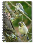 Busy Tree Spiral Notebook