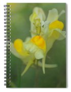 Butter And Eggs Spiral Notebook