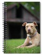 Butter Bean Spiral Notebook