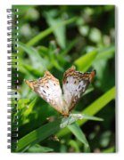 Butter Fly Spiral Notebook