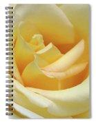 Butter Rose Spiral Notebook