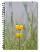 Buttercup Spiral Notebook