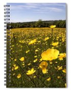 Buttercup Field Spiral Notebook