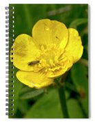 Buttercup Hospitality Spiral Notebook