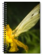 Butterflies And Blossoms Spiral Notebook