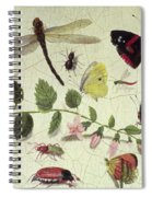 Butterflies, Insects And Flowers Spiral Notebook