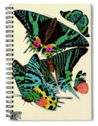 Butterflies, Plate-7 Spiral Notebook