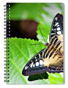 Butterfly 13a Spiral Notebook