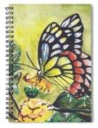 Butterfly 2 Spiral Notebook